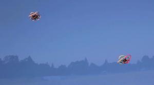 HooperFly Flying Robots